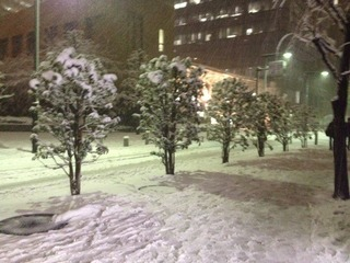 snow(20140214)